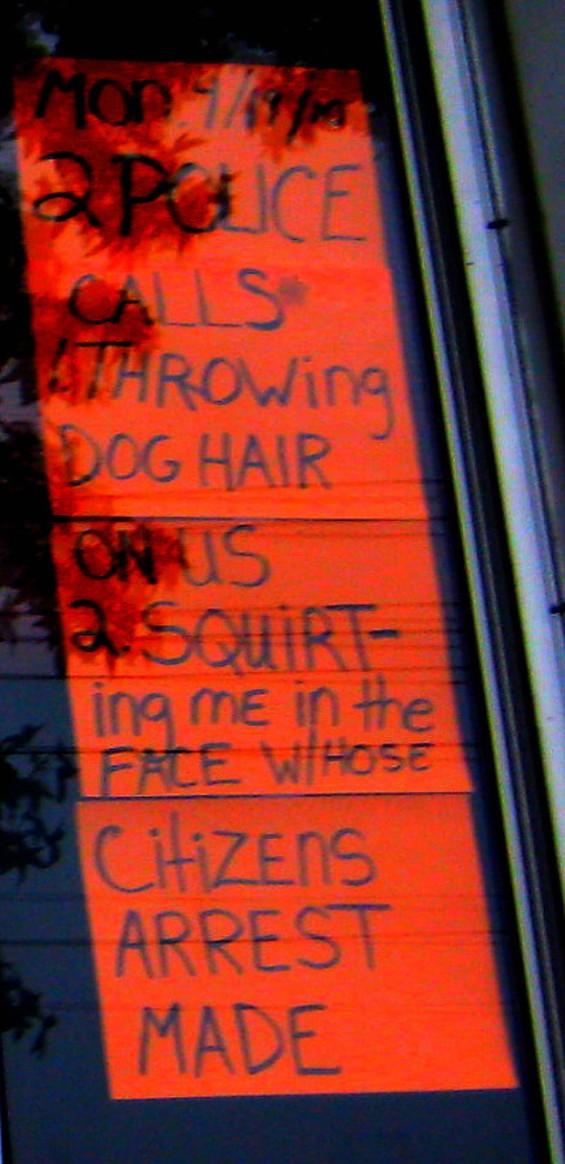 dog_hair.jpg