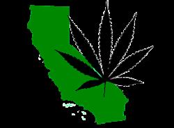 california_medical_marijuana.png