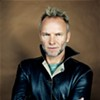 Sting: Show Preview