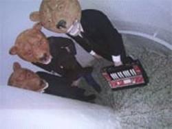 Teddybears.