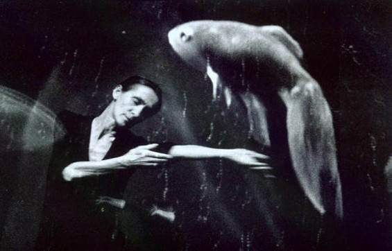 Thanks for all the fish: The late Pina Bausch - MAARTEN VANDEN ABEELE