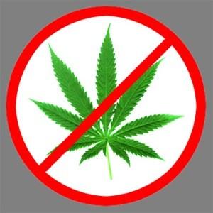 no_weed.jpg