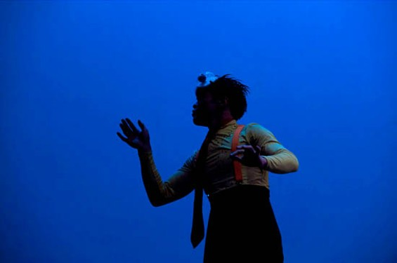 The Clownfish - ERIC GILLET