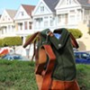 Thrillist Uncovers the Best Bags For 24-Pack Beer Transportation