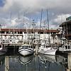The Scalawags of Fisherman's Wharf