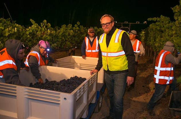 The team at J starts to harvest Pinot Meunier - J VINEYARDS