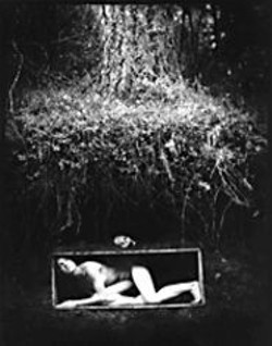 JEFF  FOHL - Thinking Inside the Box: Melanie Elms.