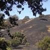 Soul Food Farm Devastated by Last Week's Fire