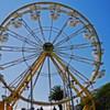 Treasure Island Music Fest Announces 2009 Dates