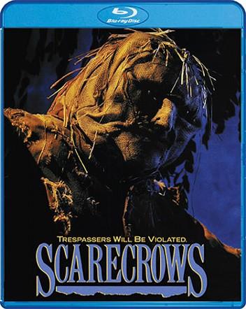 sc_26_scarecrows.jpg