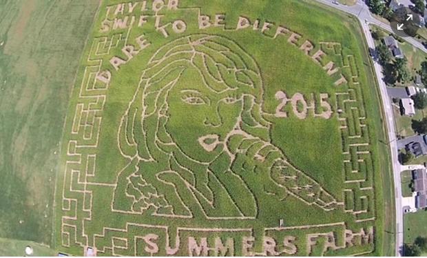 SUMMER'S FARM