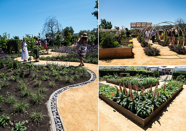 The upgraded Sunset garden takes up a quarter acre at Cornerstone Sonoma. - THE DAPPER DINER