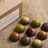 Nuubia Could Be the Zenith of Artisanal Chocolate