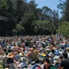 Stern Grove Festival Starts This Sunday With a Headlining Performance From Janelle Monáe