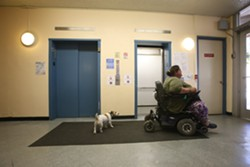 MIKE KOOZMIN - Clementina Towers resident Alexandra Elvir rides by the elevators as her 10-year-old Jack Russel Terrier, Otis, follows closely behind.