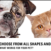 San Francisco SPCA Offering Pet Condoms to Sex-Addicted Dogs and Cats