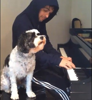 green_day_billie_joe_dog.jpg