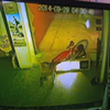 Watch These Thieves Break Into a Bike Shop (VIDEO)