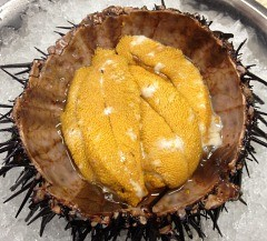 We hear Mendocino uni will be on the menu.