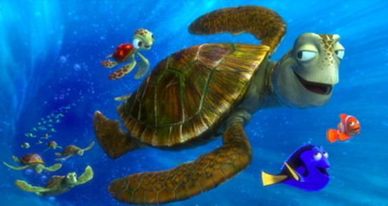 crush_sea_turtle.jpg