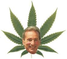 Will Tom Ammiano's latest marijuana legislation puff, puff, pass?