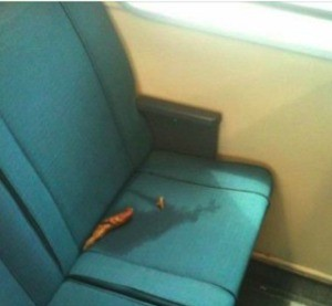 Yes, that's a crime - BART IDIOT HALL OF FAME VIA FACEBOOK