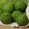 Your Seasonal Produce Guide: Makrut Limes