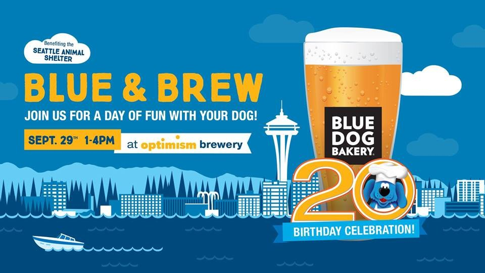 blue dog bakery 20th birthday blue brew at optimism brewing in
