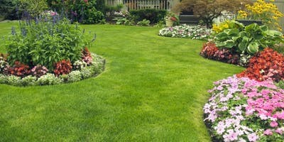 All About Lawns At Swansons Nursery In Seattle Wa On Sun