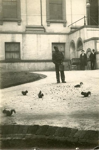 A convict feeds nuts to the squirrels beside the State Capitol in 1890. The animals were beloved pets of the state, with governors spending the modern equivalent of about $250 a year on food for them. - COOK COLLECTION, VALENTINE RICHMOND HISTORY CENTER