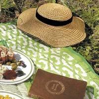 picnicshot.jpg