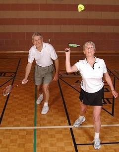 badmintonaction.jpg