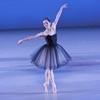 art18_dance_ballet_100.jpg