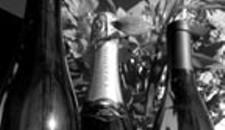 Bottles for Your Bird