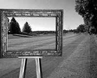 GARDENING: The Lawn as Art