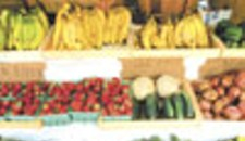 Growing Business: The Farmer's Markets