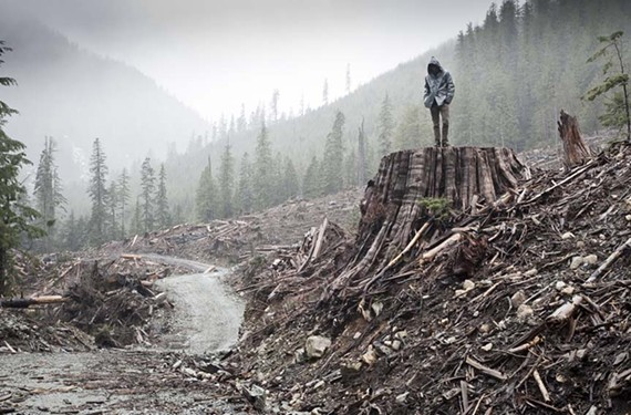 """If a Tree Falls: a Story of the Earth Liberation Front,"" will be one of the features at the fourth RVA Environmental Film Festival."