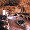 Living Arrangements: Jamestown Settlement