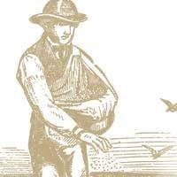 the_sower.jpg