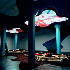 "Reflective residue: Pipilotti Rist's ""Gravity Be My Friend"" engulfs the viewer in a peculiar Dali-like landscape."
