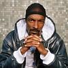 Snoop-a-Loop!