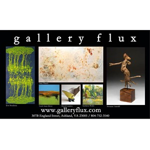 gallery_flux_12h_0213.jpg