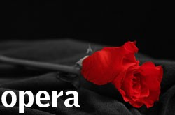 opera_button_0.jpg
