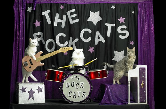 The Amazing Acro-Cats, June 11-13