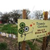 No Gardens, No Way? City Still Pushing Neighborly Nurseries