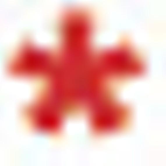 asterisk_3.jpg