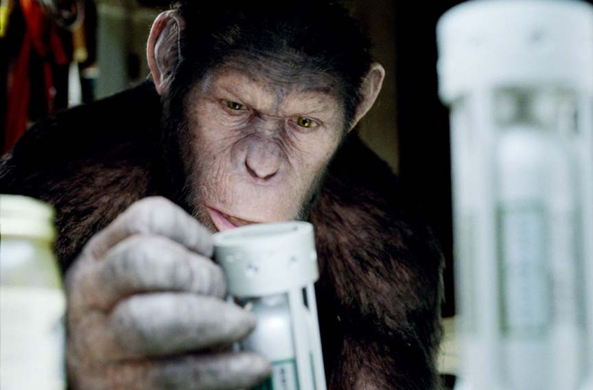 """""""This isn't my destiny ... this is paprika!"""" Andy Serkis plays the missing link in a revamped, and surprisingly good, remake of """"Planet of the Apes."""" - TWENTIETH CENTURY FOX"""