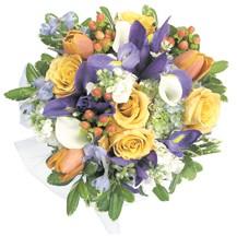 12_a_garden_lily_flowers.jpg