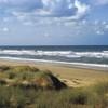 sandbridge_dunes100.jpg