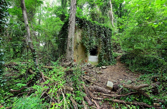 The Braxton family mausoleum, obscured by tangled overgrowth like most grave sites in Evergreen Cemetery, also has been defiled by vandals. - SCOTT ELMQUIST